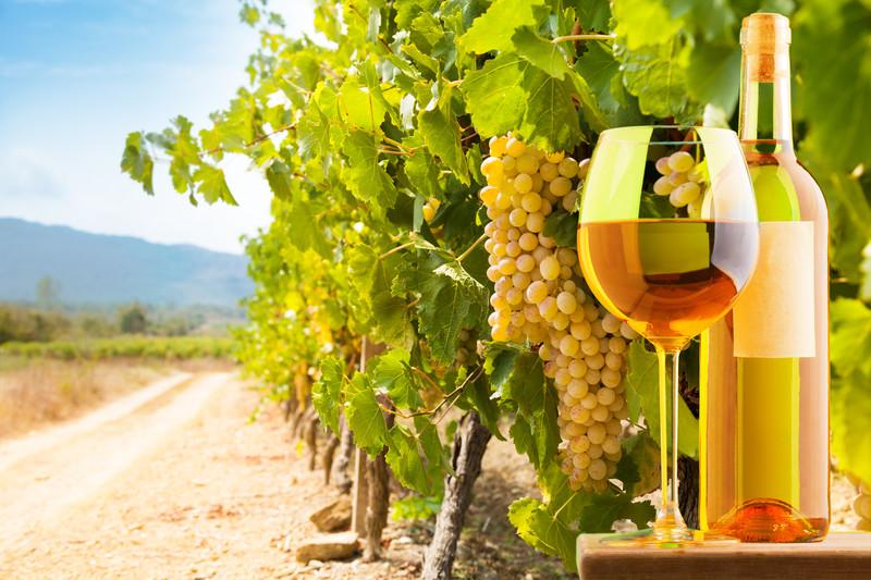ไวน์ขาว