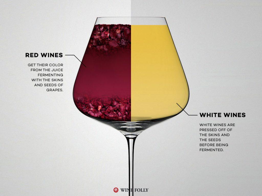 ไวน์ขาว แตกต่าง ไวน์แดง